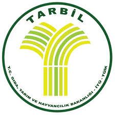 Image result for tarbil
